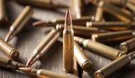Woman held with 20 bullets in Delhi Metro