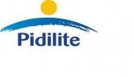 Pidilite Industries reports 20.2pct sales growth, 28.9pct EBITDA growth