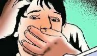 Haryana: Man stabs woman after she resists molestation in Faridabad