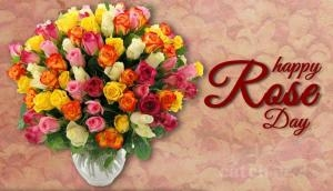 Rose Day 2018: This Valentine week know what each colour of the 'Rose' mean