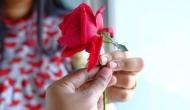 रोज डे स्पेशलः वैलेंटाइन पर जान लीजिए किसको देना है किस कलर का गुलाब