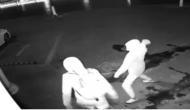 Video: ये चोरी आपको हंस हंस कर लोट-पोट करने को मजबूर कर देगी