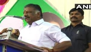 Merged with Palaniswami's faction on PM Modi's advice: Pannerselvam