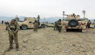 Afghan forces kill 25 insurgents: MoD