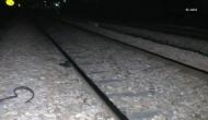 Five killed after being run over by locomotive in UP