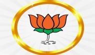 JDS-Cong Govt in Karnataka paralysed: BJP