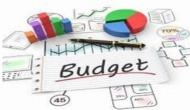 FM Piyush Goyal lays Budget 2019 in Rajya Sabha; House adjourned till Monday