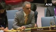 India slams Pak for nurturing terrorism at United Nations Security Council