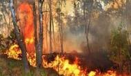 तमिलनाडु के जंगल में लगी आग ने ली 9 छात्रों की जान, 27 घायल