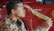 जहरीले सांपों को KISS करने वाले हुसैन की खतरनाक कोबरा ने छीन ली जिंदगी