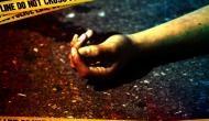 Maharashtra: Teenaged boy kills elder sister for mingling with boys ; held