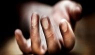 Man kills wife with hammer in Delhi