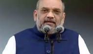 VIDEO : ट्रांसलेटर के PM मोदी पर गलत कमेंट से झल्लाए अमित शाह, कहा- जो मैं बोलू वो कहो