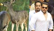 बीजेपी नेता ने सलमान पर लगाया बड़ा आरोप, बोले- नोटों का बंडल लेकर गए थे...