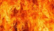 Delhi: 2 killed in garment factory blaze