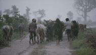 मौसम विभाग ने दी खुशखबरीः इस साल अच्छी होगी बारिश, किसानों को होगा फायदा