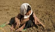 अफगानिस्तान में अकाल से 5 लाख बच्चे प्रभावित, 20 लाख लोगों पर भी मंडरा रहा है संकट