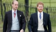 Prince Harry asks brother Prince William as to be his best man at royal wedding to Meghan Markle
