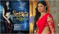 Naagin 3 actress Karishma Tanna's these Instagram posts will prove that she is the best replacement of Mouni Roy