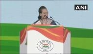 Let us all pledge to save our nation from the violent and hateful forces : Sonia Gandhi