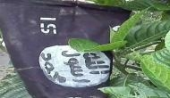 असम में पेड़ों पर लहराते दिखे ISIS के झंडे, पुलिस ने शुरू की जांच