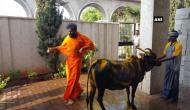 कर्नाटक चुनाव: BJP उम्मीदवार ने CM सिद्धारमैया को हराने के लिए की गौ पूजा, फोटो वायरल