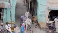 पंजाब को बना दिया पाकिस्तान, पंजाबी भी हुए 'राज़ी', वीडियो वायरल