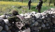 Pakistan intruder held along Indo-Pak border