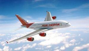 Delhi-bound Air India flight  suffers bird hit