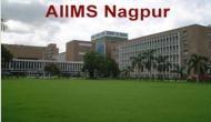 सरकारी नौकरी: AIIMS में कई पदों पर निकली वैकेंसी, 12वीं पास को भी मिलेगा मौका