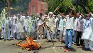 Farmer protests: Radhamohan Singh's silly statement shows govt can't solve agrarian distress