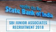 SBI Clerk Admit Card 2018: This week get your Junior Associate prelims hall tickets; read more details about exam
