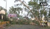 तूफान का तांडव: दिल्ली-NCR और UP में 15 की मौत, अभी और कहर बरपाएगी आसमानी आफत