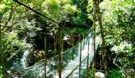 India's declining biodiversity, a victim of over exploitation