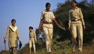 वन विभाग में सैकड़ों पदों पर हो रही है भर्तियां, 12वीं पास के लिए सुनहरा मौका