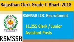 RSMSSB: एलडीसी, जेए के 11,255 पदों पर आवेदन की अंतिम तिथि में हुआ बदलाव