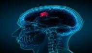 Health Tips: तुरंत हो जाएं सावधान, भारत में तेजी से बढ़ रहे ब्रेन कैंसर, स्ट्रोक और अल्जाइमर के मामले