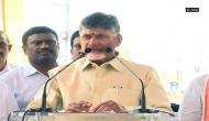 Andhra Pradesh CM inaugurates Krishna River's Eastern Delta Regulator