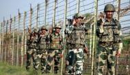 BSF jawan deployed in J-K's Kathua receives bullet injury