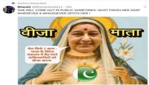 Interfaith passport issue: Union Minister Sushma Swaraj likes 'Visa Mata' for Pakistan tweet over helping Pakistanis than Indians