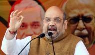 'Raja sahab stopped development': Amit Shah jabs CM Amarinder Singh