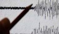 अंडमान निकोबार भूकंप के झटकों से हिला, तीव्रता 4.8