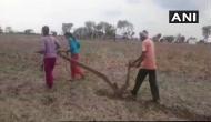 Uttar Pradesh farmer's daughters plough field to please rain God