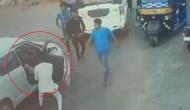 बेटे ने बीच सड़क गाड़ी रोक की थी मारपीट, BJP विधायक बोले- छोटा मामला, तिल का ताड़ न बनाएं