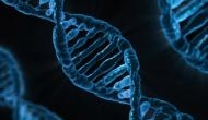 Widespread transfer of genes is important driver of evolution