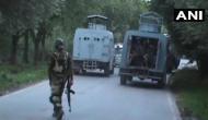 Jammu and Kashmir: Encounter underway in Shopian