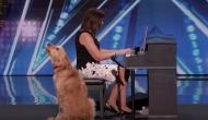 Watch video: Singing golden retriever impressed everyone, including Simon Cowell, on America's Got Talent