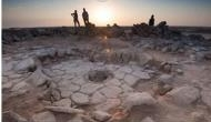 Scientists discover remains of 14,000-year-old bread
