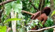 अमेजन के खतरनाक जंगल में ऐसे और इतने सालों से अकेला रह रहा है ये शख्स, वीडियो आया सामने
