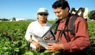 कृषि विभाग में नौकरी का सुनहरा मौका, 12वीं पास है आवेदन की योग्यता